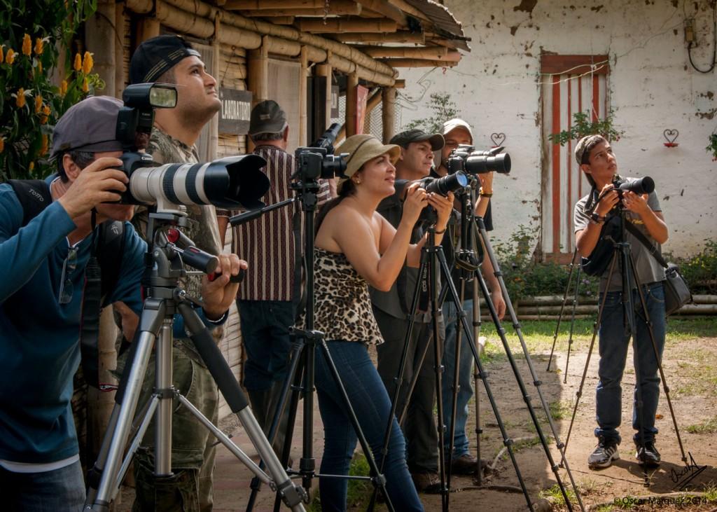 Estudiantes de Fotografía de la Naturaleza Capturando Aves con sus Cámaras