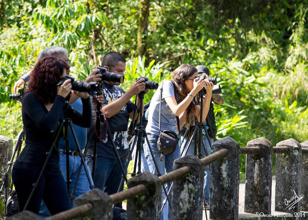 Estudiantes del Curso de Fotografía de la Naturaleza en Practica